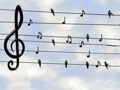 Online-Singabend mit Kirchenmusikerin Jacinta Pereira aus Crailsheim  Kopieren