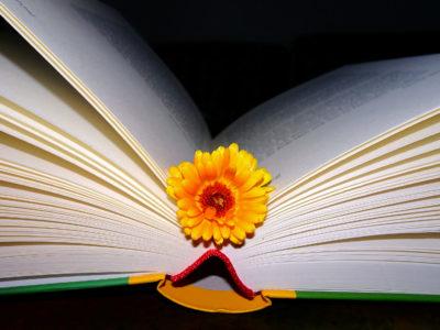 """Schwester Philippa Rath liest aus ihrem Buch """"Weil Gott es so will"""""""